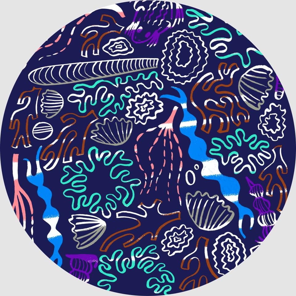 Rockpool circle